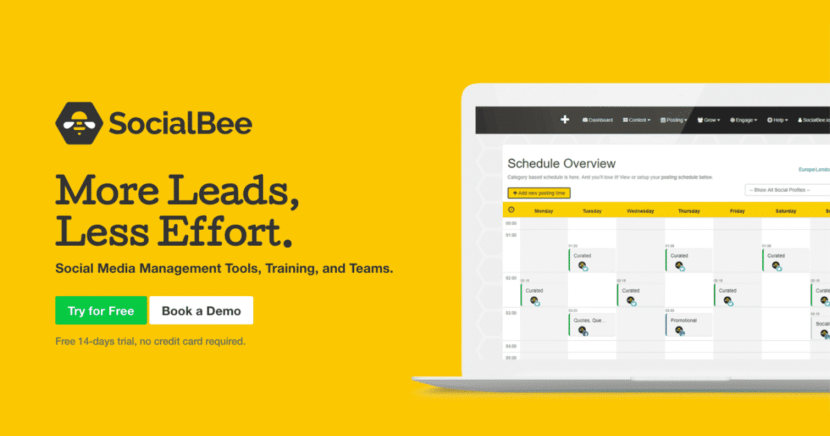 Social Media Management Tools, Training, and Teams | SocialBee